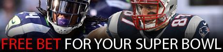 Super Bowl XLIX Bonus and Props