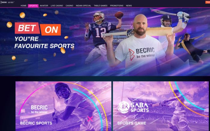 Becric Sportsbook India