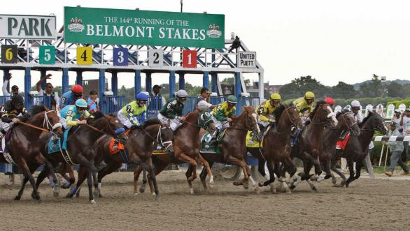 Belmont Stakes - odds and lines
