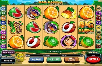 Big Kahuna Snakes And Ladders Slot Game Microgaming