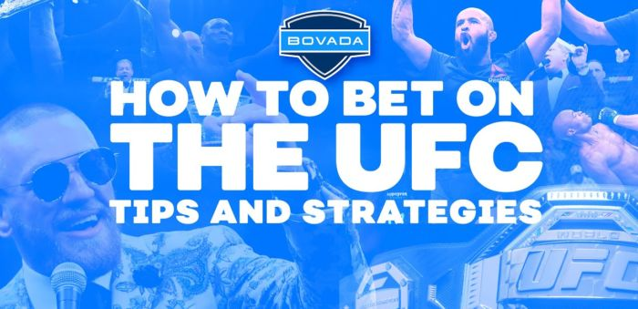 Bovada Sports UFC betting