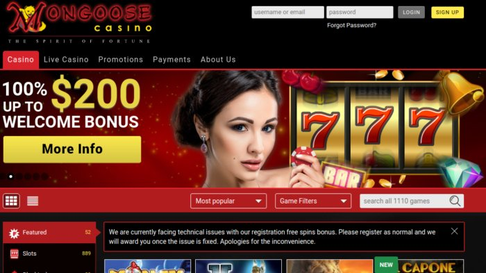 Mongoose Casino review