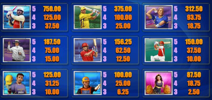 Premier League Cricket Slot Game Indi Slots