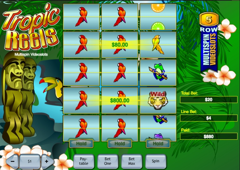 Tropic Reels slot game