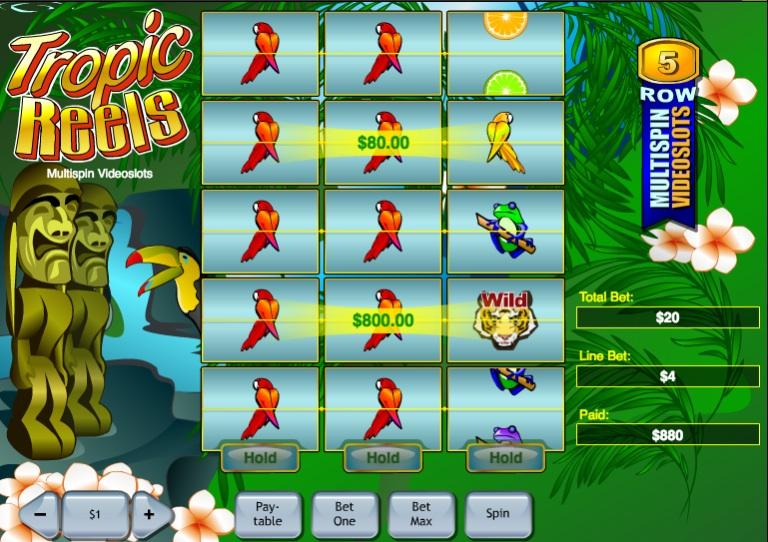 Tropic Reels slot game