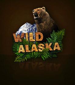 Winaday mobile casino - WildAlaska slot game