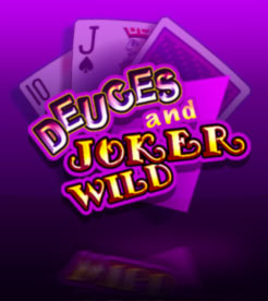 Winaday mobile casino - DeucesAndJokerWild video poker