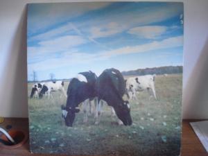 Pink Floyd bootleg - Dark Side of the Moo