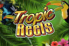 Tropic Reels Slots game Playtech
