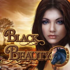 Play Black Beauty Slots game Merkur