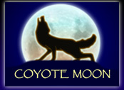 Coyote Moon Slots game IGT