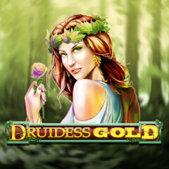 Druidess Gold Slots game Amaya