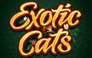 Exotic Cats Slots game Microgaming