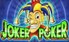 Joker Poker Video Poker game RTG