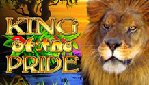 Play King of the Pride Slots game Novomatic