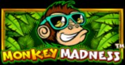 Monkey Madness Slots game PragmaticPlay