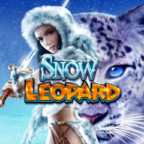 Play Snow Leopard Slots game WMS