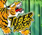 Play Tiger Rush Slots game Thunderkick