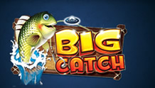 Big Catch Slots game Novomatic