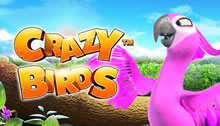Play Crazy Birds Slots game Novomatic