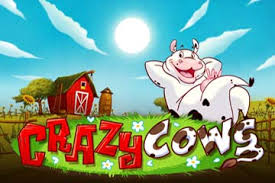 Play Crazy Cows Slots game Casumo