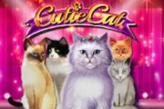 Cutie Cat Slots game Gamomat