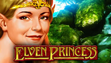 Elven Princess Slots game Novomatic