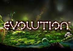 Evolution  Slots