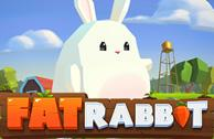 Play Fat Rabbit Slots game Push Gaming