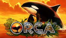 Play Orca Slots game Novomatic