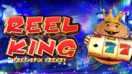 Reel King Free Spin Frenzy Slots game Novomatic