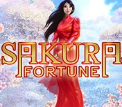 Play Sakura Fortune Slots game