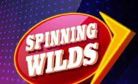 Spinning Wilds Slots game Green Valley