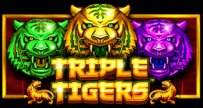 Triple Tigers Slots game PragmaticPlay