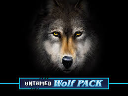 Untamed Wolf Pack Slots game Casumo