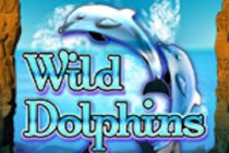 Play Wild Dolphins Slots game Oryx