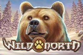 Play Wild North Slots game Casumo