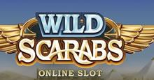 Play Wild Scarabs Slots game Microgaming