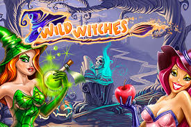 Wild Witches Slots game NetEnt