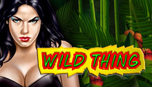 Play Wild Thing Slots game Novomatic